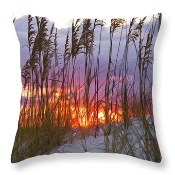 Golden Amber Throw Pillow by Janet Fikar