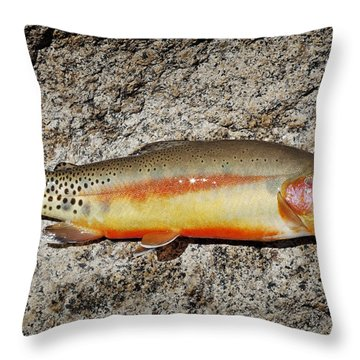 Golden Beauty Throw Pillow by Kelley King