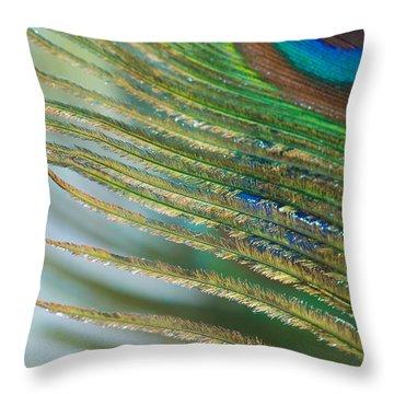Golden Feather Throw Pillow by Lisa Knechtel
