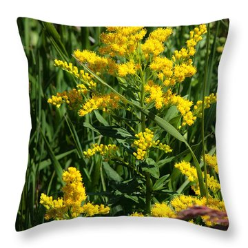 Golden October Throw Pillow by Christine Till