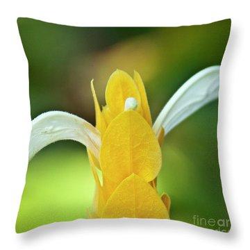 Golden Shrimp Plant Throw Pillow by Heiko Koehrer-Wagner