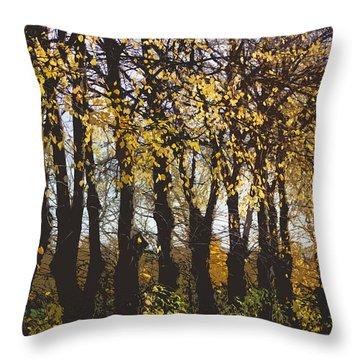 Golden Trees 1 Throw Pillow by Carol Lynch