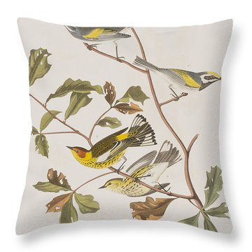 Golden Winged Warbler Or Cape May Warbler Throw Pillow by John James Audubon