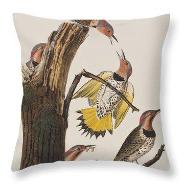Golden-winged Woodpecker Throw Pillow by John James Audubon