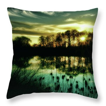 Goodbye To Today Throw Pillow by Bonnie Bruno
