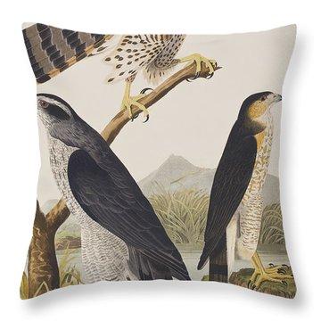 Goshawk And Stanley Hawk Throw Pillow by John James Audubon