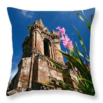Gothic Chapel Throw Pillow by Gaspar Avila