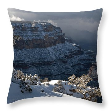 Grand Canyon Storm Throw Pillow by Sandra Bronstein