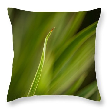 Grass Abstract 2 Throw Pillow by Mike Reid
