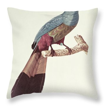 Great Touraco Throw Pillow by Jacques Barraband