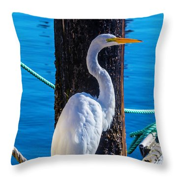 Great White Heron Throw Pillow by Garry Gay