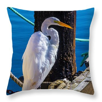 Great White Heron On Boat Dock Throw Pillow by Garry Gay