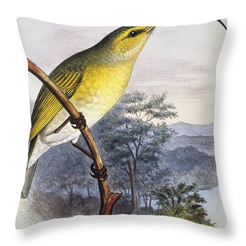 Greater Akialoa Throw Pillow by Hawaiian Legacy Archive - Printscapes