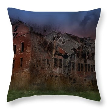 Green Acres Throw Pillow by Shelley Neff