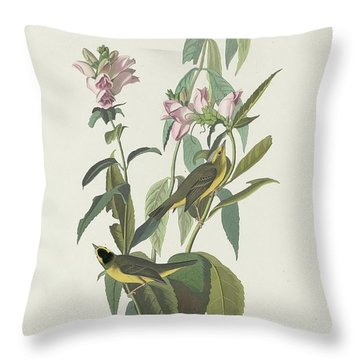 Green Black-capt Flycatcher Throw Pillow by John James Audubon