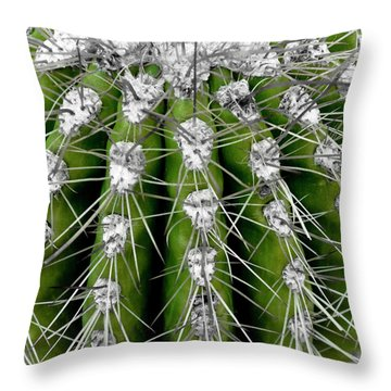 Throw Pillow featuring the photograph Green Cactus by Frank Tschakert