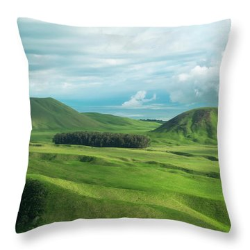 Green Hills On The Big Island Of Hawaii Throw Pillow by Larry Marshall
