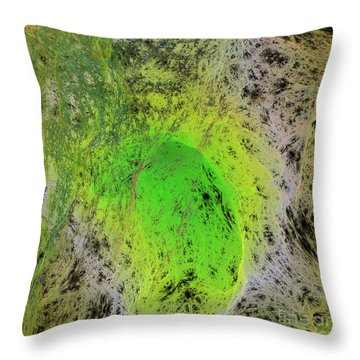 Green On Center Stage Throw Pillow by Deborah Benoit