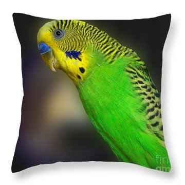 Green Parakeet Portrait Throw Pillow by Jai Johnson