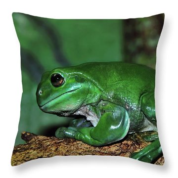 Green Tree Frog With A Smile Throw Pillow by Kaye Menner