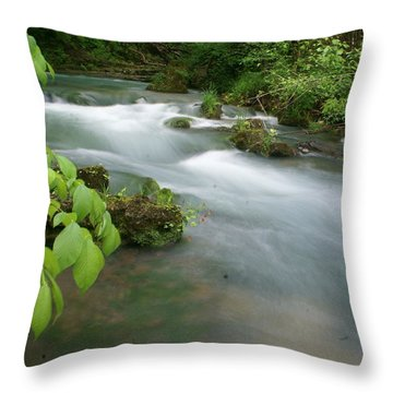 Greer Spring Branch 2 Throw Pillow by Marty Koch