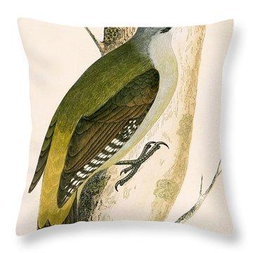 Grey Woodpecker Throw Pillow by English School