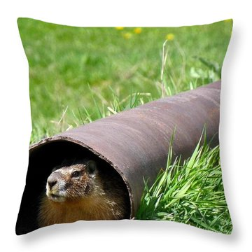 Groundhog In A Pipe Throw Pillow by Will Borden