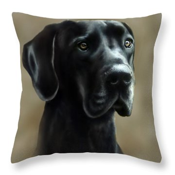 Gulliver Throw Pillow by Barbara Hymer