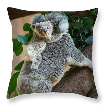 Hanging On Throw Pillow by Jamie Pham