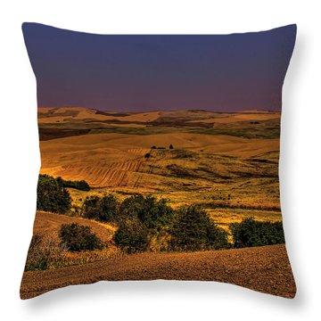 Harvested Fields Throw Pillow by David Patterson