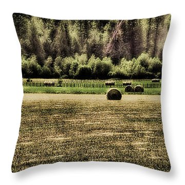 Hay Harvest Throw Pillow by David Patterson