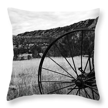 Hay Rake At The Ewing-snell Ranch Throw Pillow by Larry Ricker