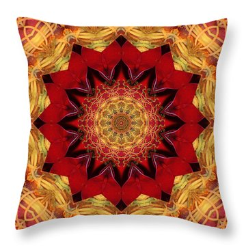Healing Mandala 28 Throw Pillow by Bell And Todd