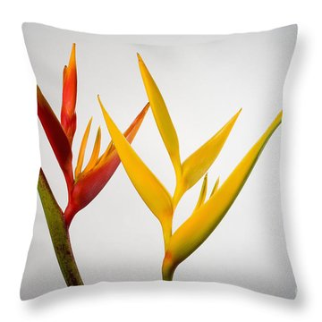 Heliconia Throw Pillow by Tomas del Amo - Printscapes