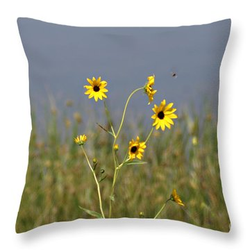 Hello Sunshine Throw Pillow by Shawn Naranjo