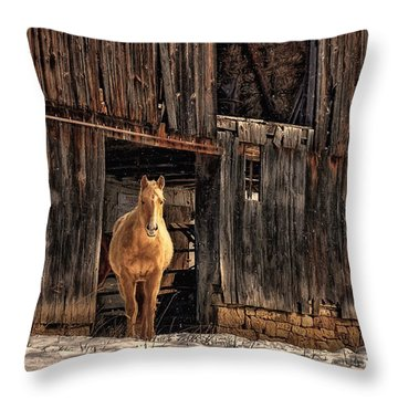 Hello Sweetheart Throw Pillow by Lois Bryan