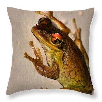 Heres Looking At You Throw Pillow by Kristin Elmquist
