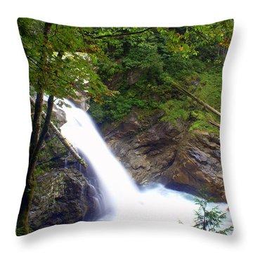 Hidden Falls Throw Pillow by Marty Koch