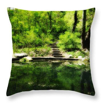 Hidden Pond At Schuylkill Valley Nature Center Throw Pillow by Bill Cannon