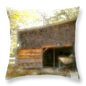 Hide And Seek Throw Pillow by Rose Guay