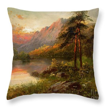 Highland Solitude Throw Pillow by Frank Hider