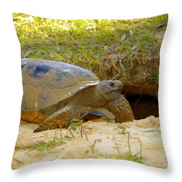 Home Sweet Burrow Throw Pillow by David Lee Thompson