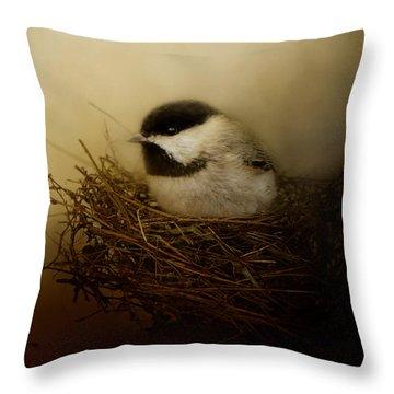 Home Tweet Home Throw Pillow by Jai Johnson