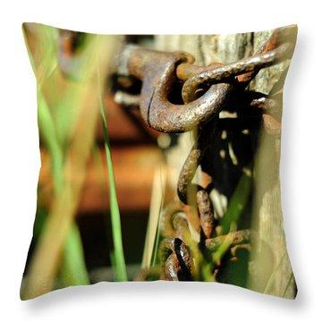 Homeward Bound Throw Pillow by Rebecca Sherman