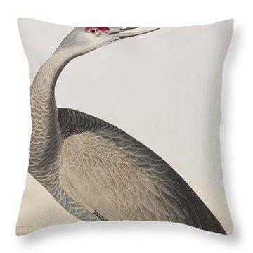 Hooping Crane Throw Pillow by John James Audubon