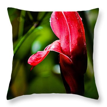 Horned Blossom Throw Pillow by Christopher Holmes
