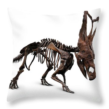 Horned Dinosaur Skeleton Throw Pillow by Oleksiy Maksymenko