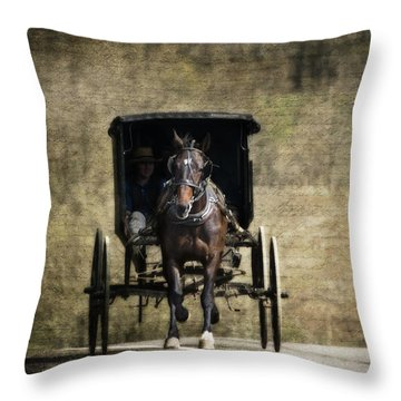 Horse And Buggy Throw Pillow by Tom Mc Nemar
