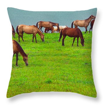 Horses Graze By Seaside Throw Pillow by Thomas R Fletcher