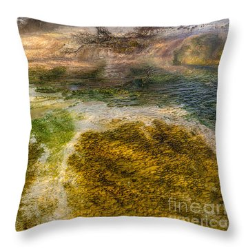 Hot Springs Pool Throw Pillow by Sue Smith
